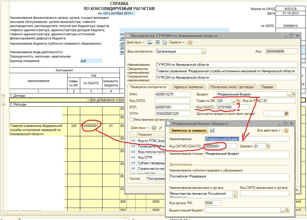 Как заполнить бюджетную форму 0503710